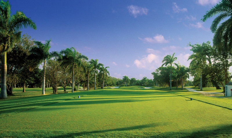 Greatview jamaica villas38