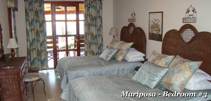 Mariposa 14
