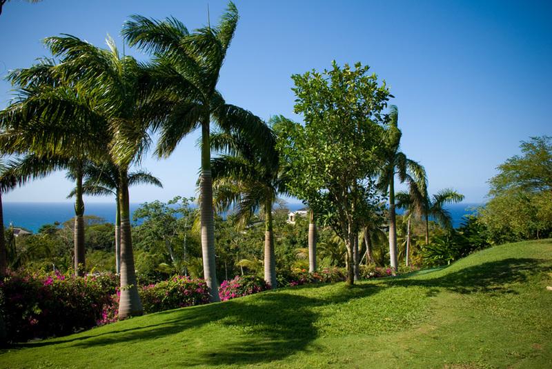 Point of view jamaica villas06