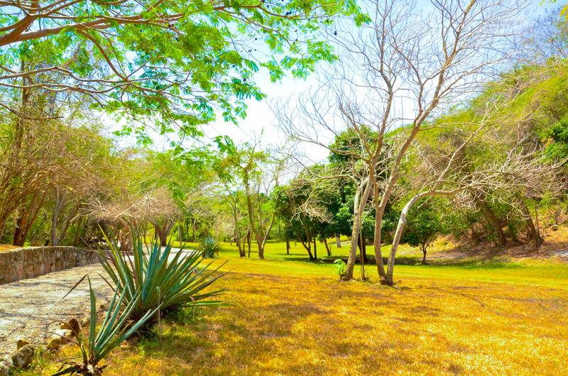 Rancho Primavera 1