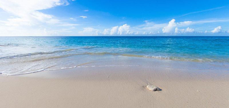 Sandcastle 36